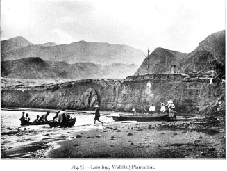 These small boats were used to transport the various post-eruption assessment teams from Chateaubelair to various points along the coast. This served as the easiest means of assessing the burnt-out plantations of Wallibou and Richmond.