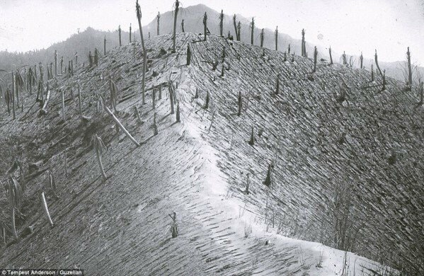 Hillsides were stripped bare during the 1902 volcanic eruption.